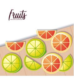 fresh oranges with lemons sliced fruits vector image