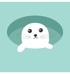 Harp baby seal pup Ice-hole Cute cartoon character vector