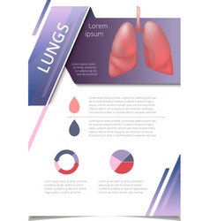 Internal human organs infographic lung vector