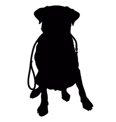 Labrador retriever leash silhouette vector
