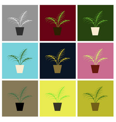 Assembly flat icons ficus vector