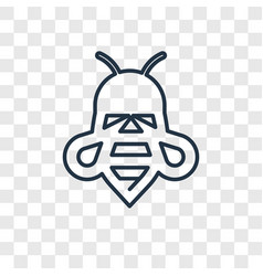 bee concept linear icon isolated on transparent vector image