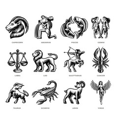 Black and white zodiac signs set vector