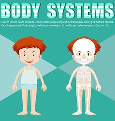 Body system of boy and girl vector