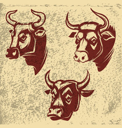 Bull heads emblems on grunge background design vector