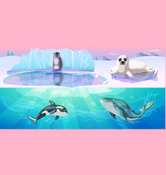 Colorful arctic animals horizontal banners vector