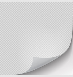 Curled page corner turning paper sheet realistic vector
