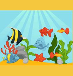 Fishes in aquarium or ocean underwater vector