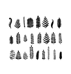 Leaf set sketch for your design vector image