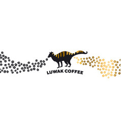 luwak coffee banner template vector image