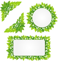 White flowers on green leaves frame vector