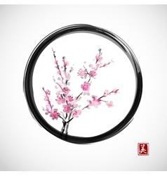 Oriental cherry branch in blossom vector image vector image