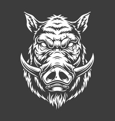 boar head in black and white color style vector image