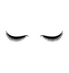 eye lashes icon lashes vector image