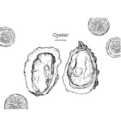 Fresh oysters luxury seafood of vector