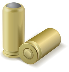 Pair bullets vector