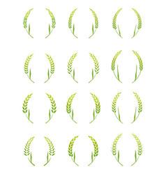 gold laurel wreath - a symbol of the winner vector image