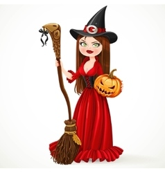 Beautiful witch in a red dress holding a broom for vector