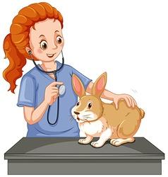 Vet examining little bunny vector image vector image
