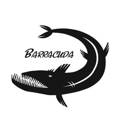 barracuda fish for your design vector image