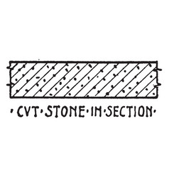 cvt stone in section material symbol branches are vector image