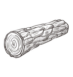 wooden log and piece firewood hand drawn vector image
