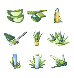 aloe vera icon set cartoon style vector image