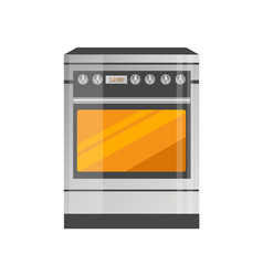 Kitchen stove of high quality in metallic corpus vector