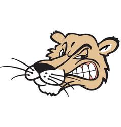 mountain lion head logo mascot vector image
