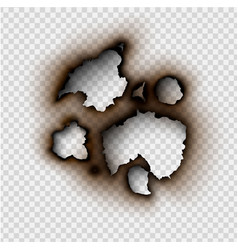 ripped paper with burnt and flame on transparent vector image