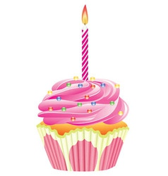 cupcake with burning candle vector image vector image