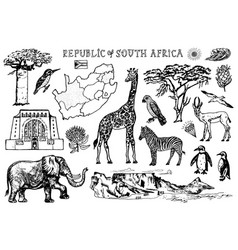 Africa doodle vintage set wild animals in safari vector