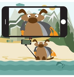 Concept flat design with dog and selfie stick vector image