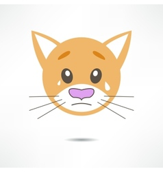Crying cat vector image