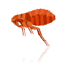 Flat geometric flea vector