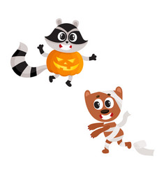 Flat sraccoon wearing pumpkin mummy dog vector