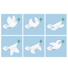 flying white dove olive animation sprite sheet vector image