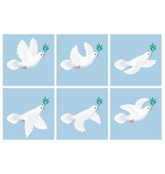 Flying white dove olive animation sprite sheet vector