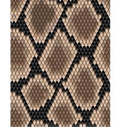 Seamless pattern snake skin vector