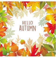 Seasonal frame of autumnal leaves vector