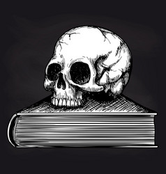 skull on book sketch on blackboard vector image