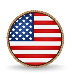 American Seal vector image