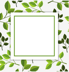 Border template with green leaves in background vector