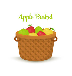 Brown basket with apples bright fruits vector