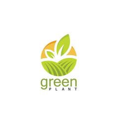 Circle green plant logo vector