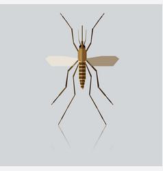flat geometric mosquito vector image