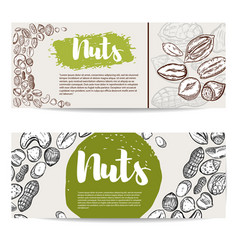 Nuts flyer template with border from nuts design vector
