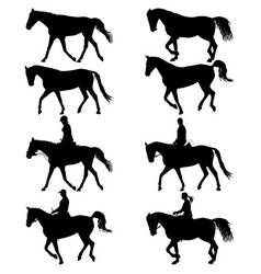 set silhouette of horse and jockey vector image