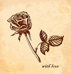 Vintage old background with rose vector image