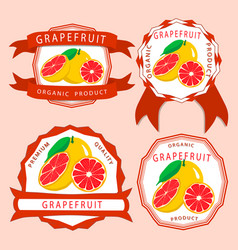 the red grapefruit vector image vector image